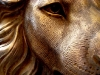 Resin Lion